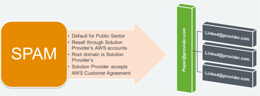 Default for public sector. Resell through solution provider's AWS accounts. Root domain belongs to solution provider. Solution provider accepts the AWS Customer Agreement.