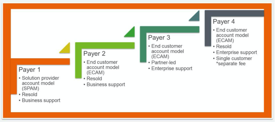 Payer 1 is SPAM with Resold delivery model and Business support. Payer 2 is ECAM with Resold delivery model and Business support. Payer 3 is ECAM with Partner-Led delivery model and Enterprise support. Payer 4 is ECAM with Resold delivery model, Enterprise support, and a single customer.
