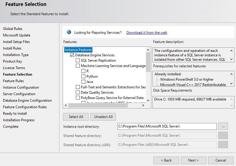 In Feature Selection, under Instance Features, the Database Engine Services check box is selected.