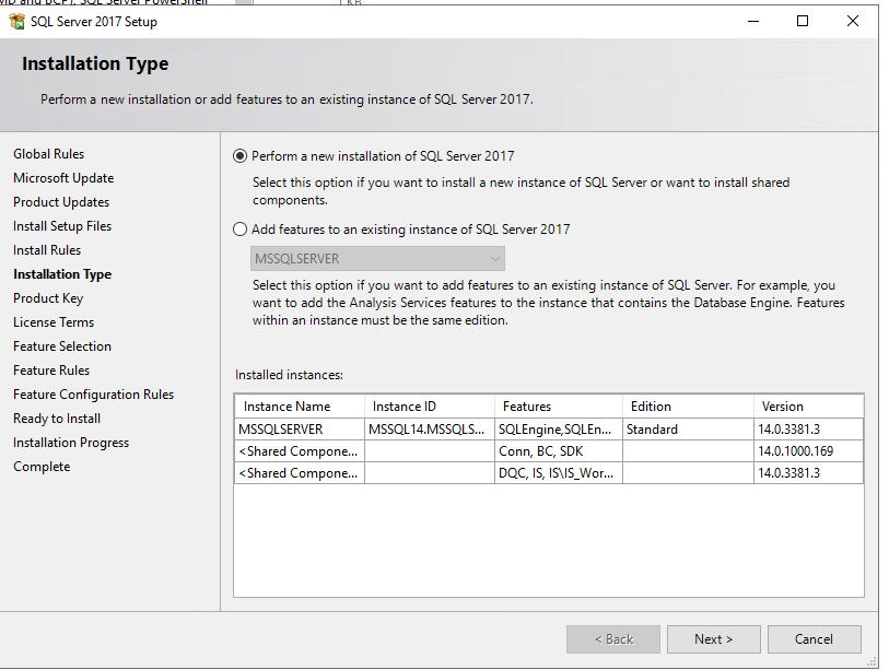 Installation Type displays two options: Perform a new installation of SQL Server 2017 (which is selected in this example) and Add features to an existing instance of SQL Server 2017. There is also a table of installed instances with columns for instance name, instance ID, features, edition, and version.