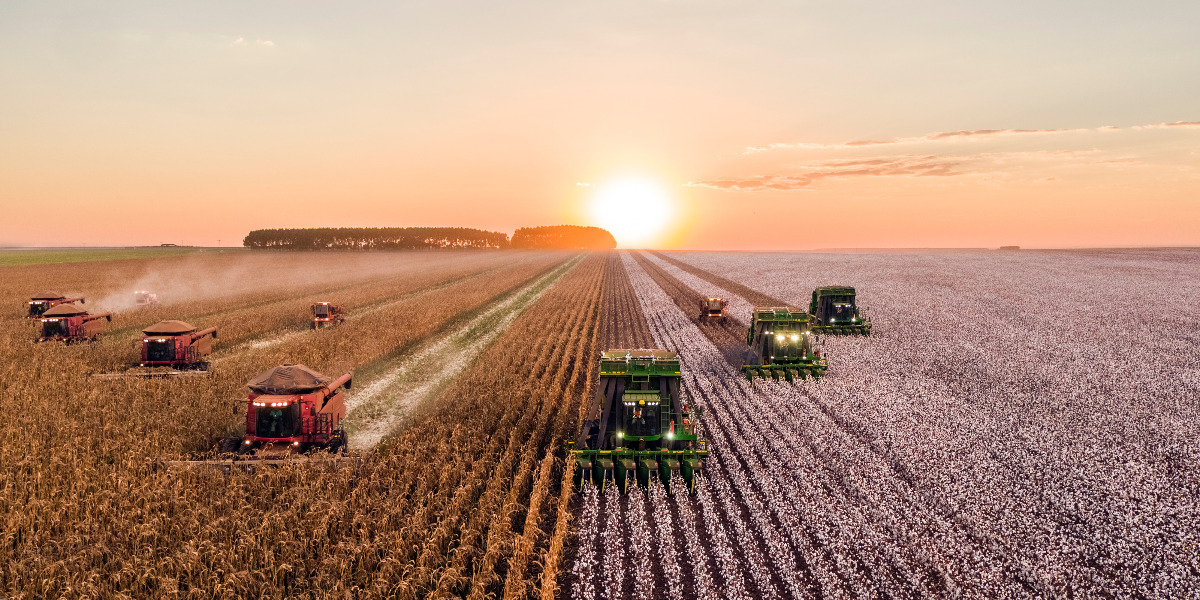 tractors plowing a field at sunrise