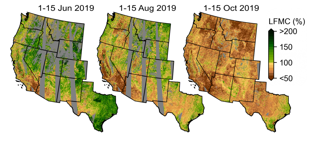 Forest dryness mapped using our LSTM model. Forest dryness is displayed as a percentage of water in trees relative to their dry biomass.