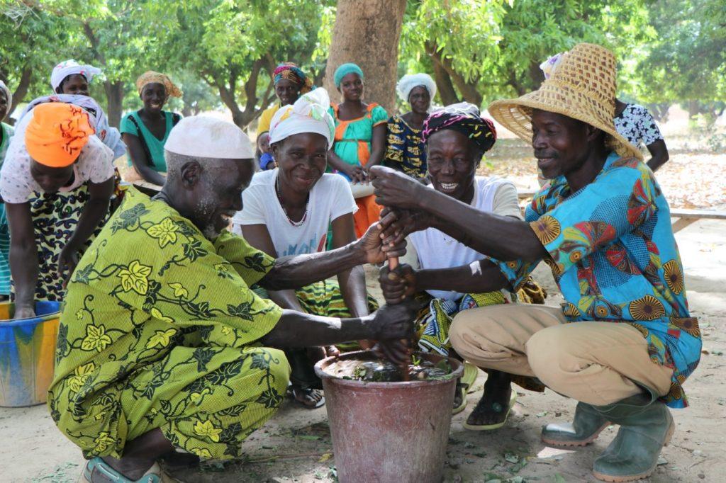 West African farmers attend an ECHO training.