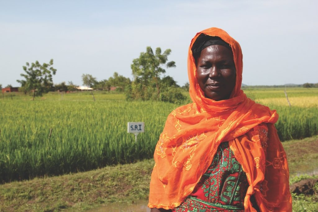 This woman is the leader of a women's farming cooperative in Burkina Faso. Her cooperative is using a technique (pictured in the background) that she learned from ECHO and Cornell University that is helping to more than triple her rice yield. The technique is more labor intensive but uses much less water (a big problem in Sub-Saharan West Africa) and gives more yield for famers with limited field space. This technique was developed by a French Jesuit in Madagascar. Most of the incredible information that can save lives through agriculture comes from the fields of farmers. Helping distribute that information while still preserving intellectual property rights is one of ECHO's core goals.