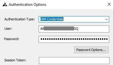 Figure 6: ODBC authentication options