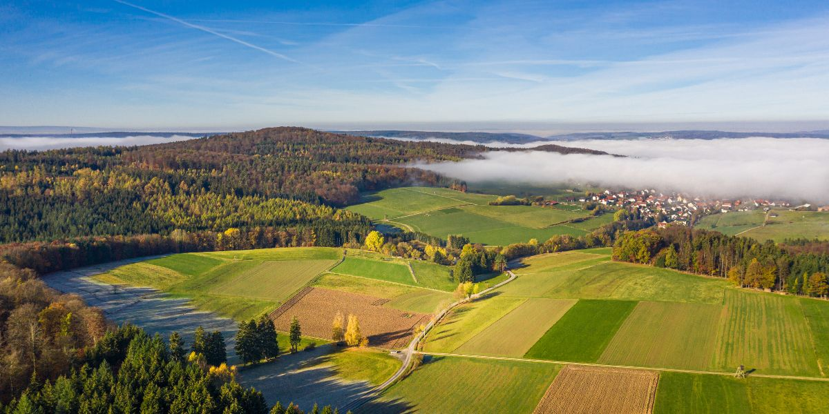 aerial view of green field and fog