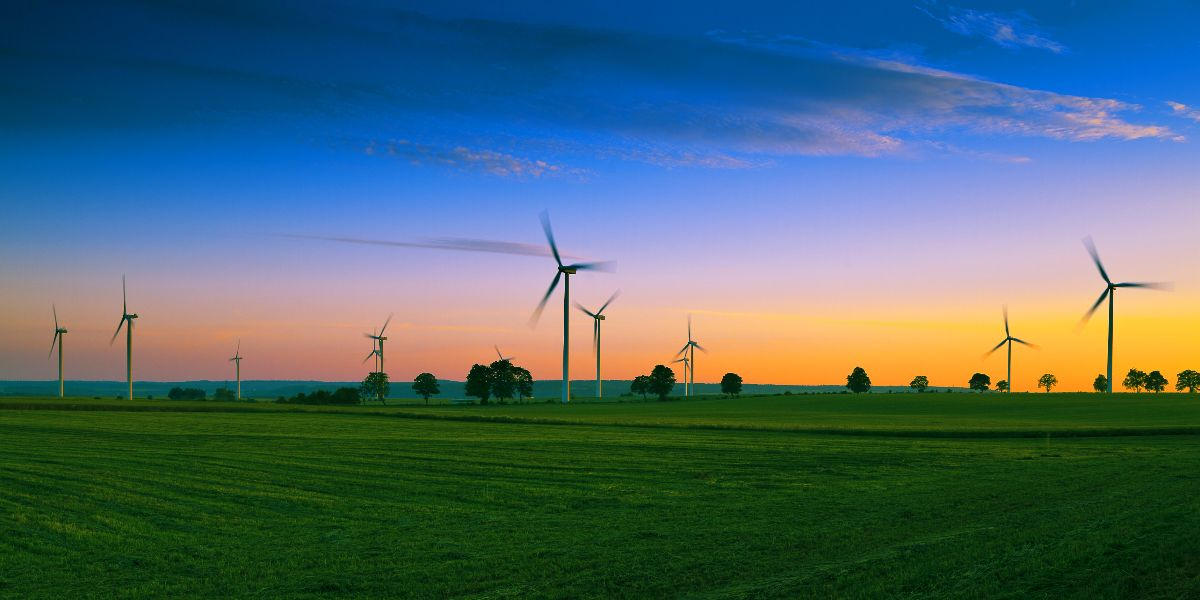 wind turbines green field at sunset