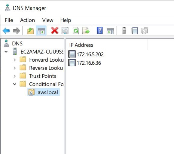DNS Manager with Conditional Forwarders for aws.local domain