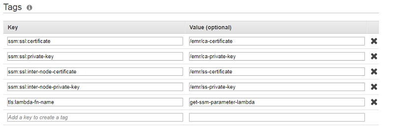 Encrypt data in transit using a TLS custom certificate provider with