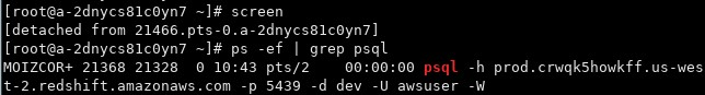 The SQL command is now running in the background. You can check by running ps -ef | grep psql.