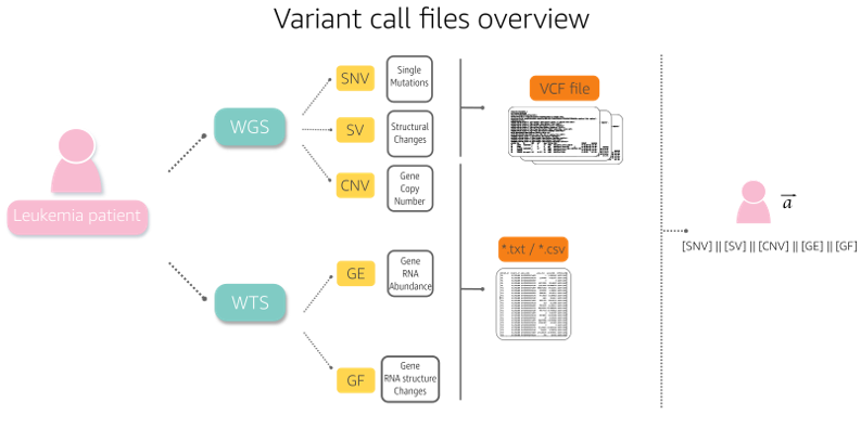 Variant call files overview