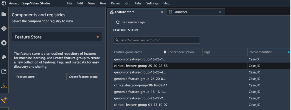 The processed features will be stored in the feature group as shown in a list of feature groups in Feature Store tab