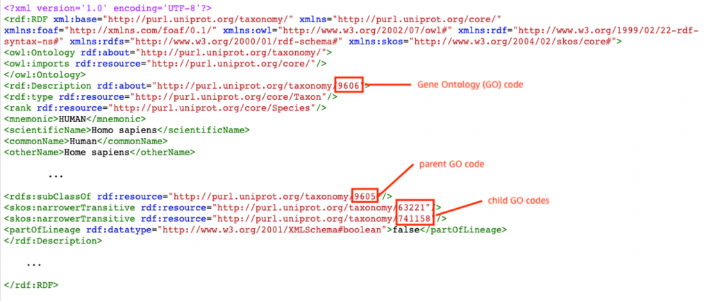 Example RDF file