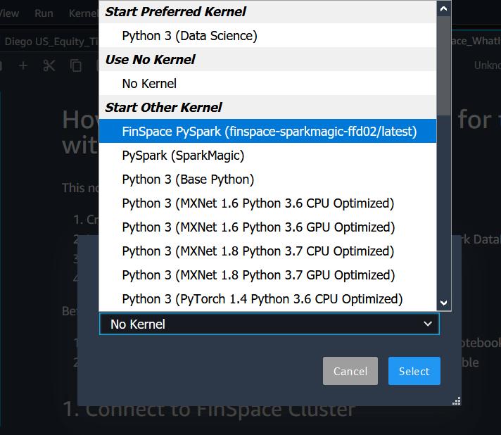 Amazon FinSpace PySpark kernel