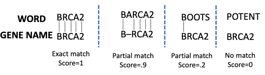 Example of matching scores using the Smith-Waterman algorithm
