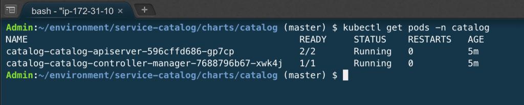 Service-Catalog pods running.