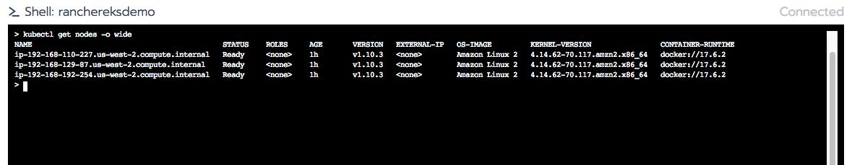 shell 'kubectl get nodes -o wide'.