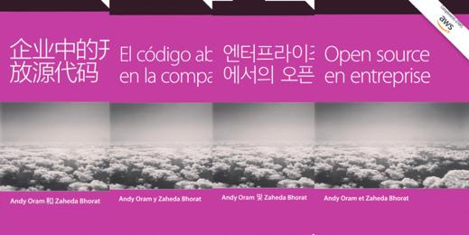 4 种语言版本的《企业中的开放源代码》书籍封面。