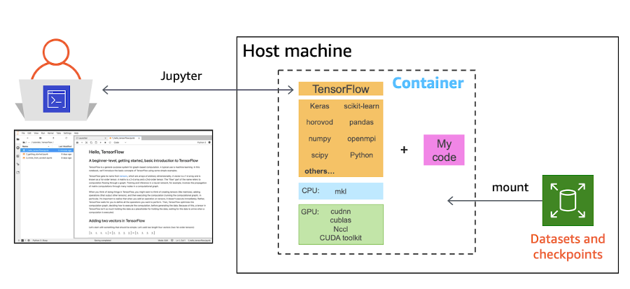 diagram of host machine, container, code, and datasets and checkpoints