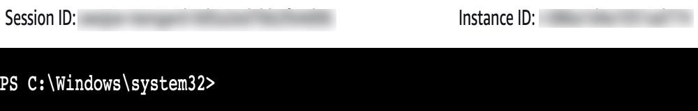 Screenshot of PowerShell command-line interface.