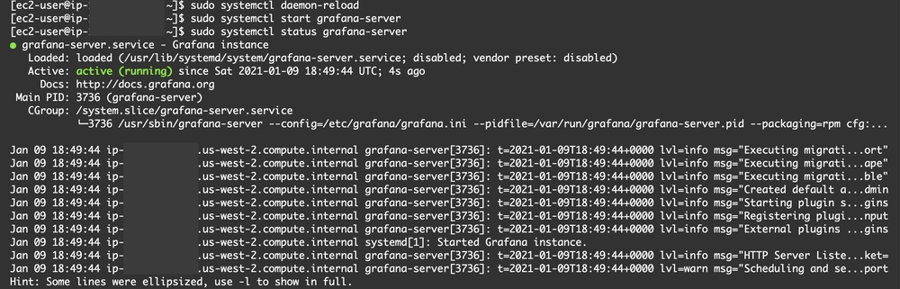 Output indicating that the server has started successfully.