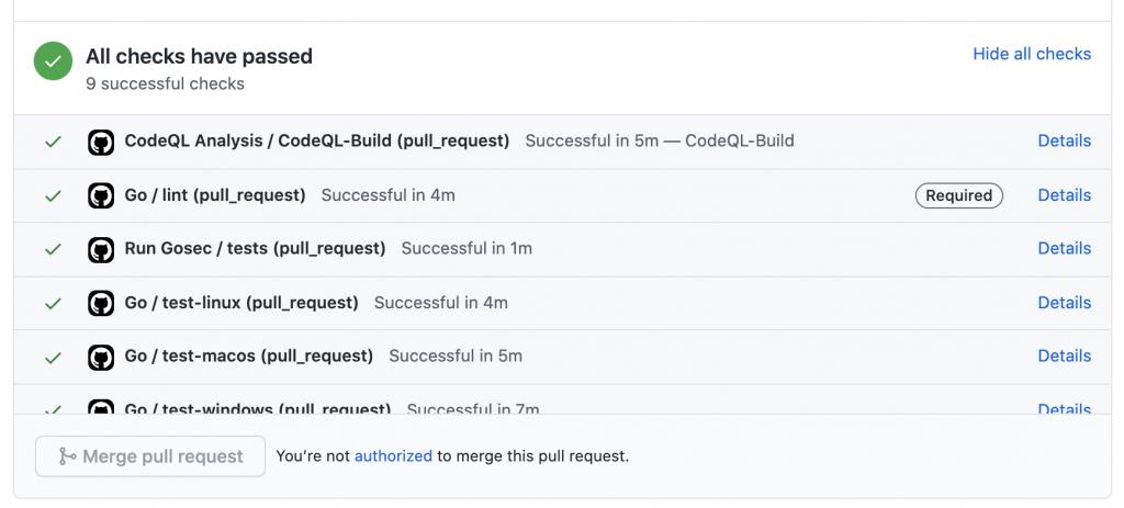 screenshot of a CodeQL test passing on a PR