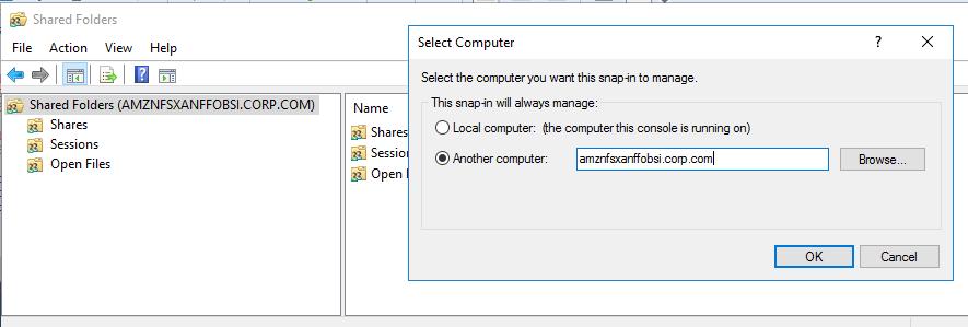 Amazon FSx コンソールから取得した Amazon FSx ファイルサーバーの DNS 名を指定する