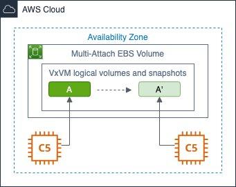 Figure 1 - Instant snapshot with Veritas CVM