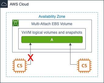 Figure 2 - HA scenario with Veritas CVM