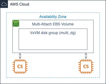 Figure 3 - AWS Nitro System-based instances with Multi-Attach enabled EBS volume and CVM