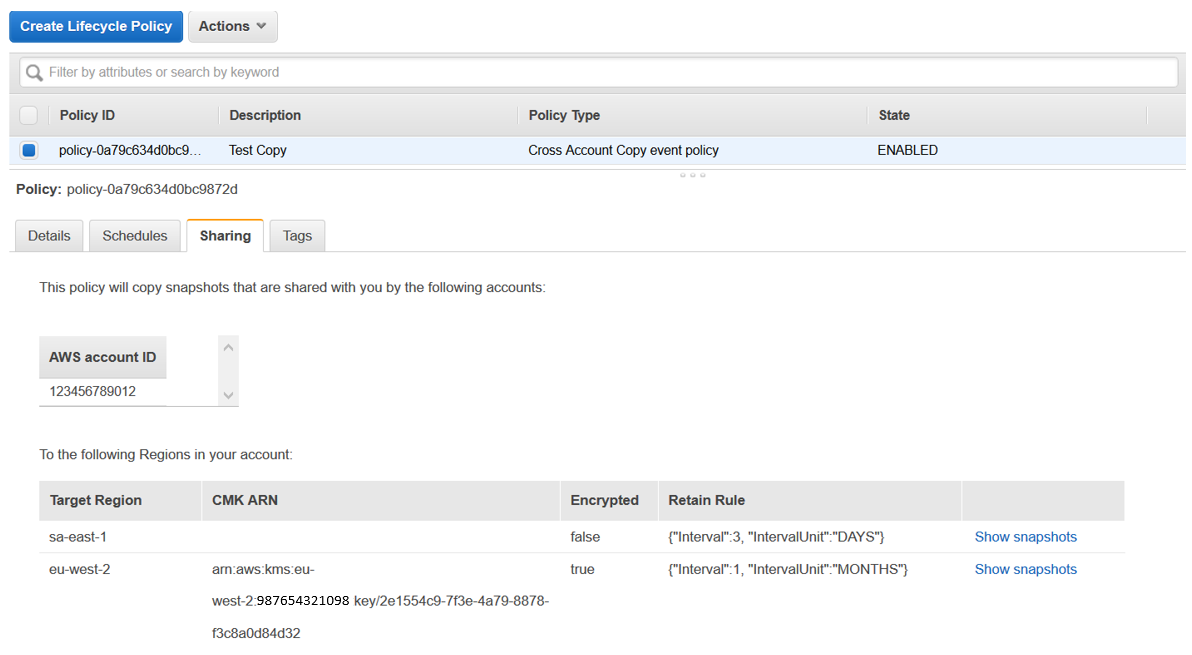 Back at the Amazon DLM console page, you can select the policy and see more details.