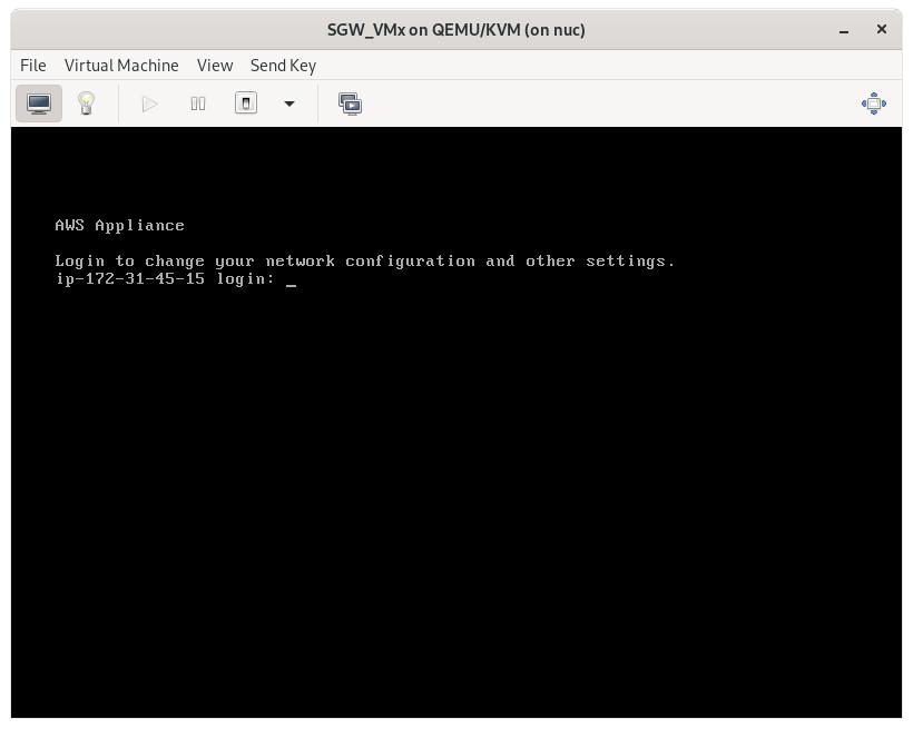 VM's login prompt
