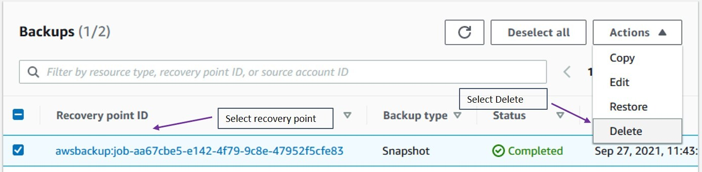 delete this backup, select the recovery point from the Backups section of the vault