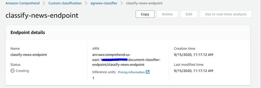 Custom Classification Model Endpoint Page