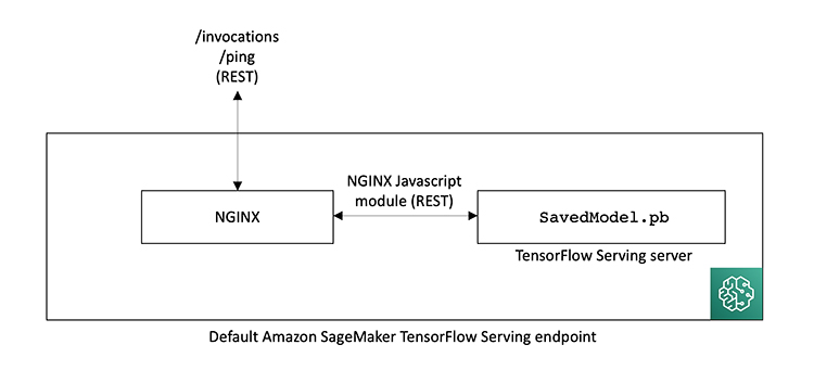 How Contentsquare reduced TensorFlow inference latency with TensorFlow Serving on Amazon SageMaker