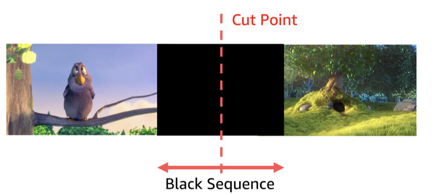 Black frames detection