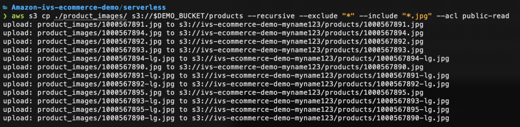Command Line Interface demonstrating AWS CLI S3 Copy command