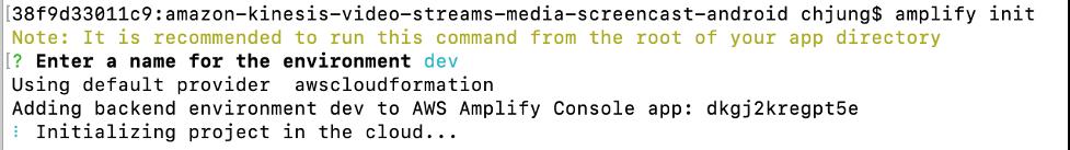 amplify CLI example