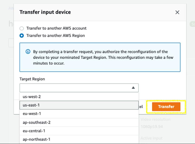 Transfer device window