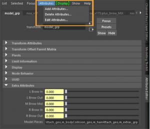 Adding custom attributes