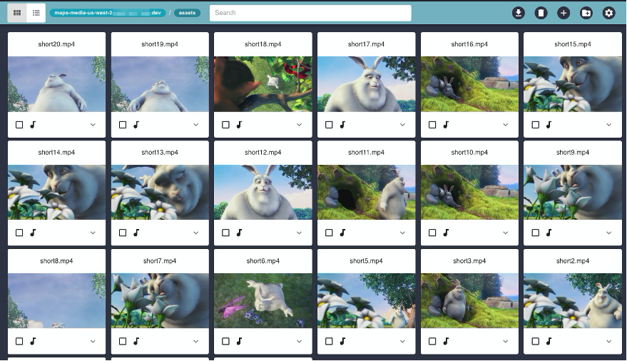 This is the MAPS card layout. This shows media assets with a thumbnail preview.