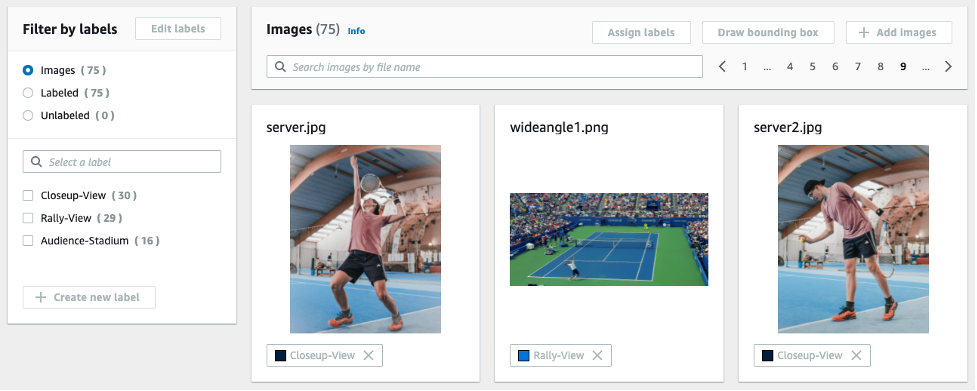 Examples of training dataset and annotation labels attached to the images