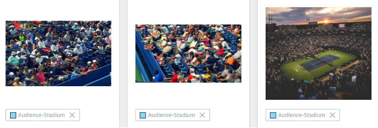 Examples of training dataset in Audience-Stadium class