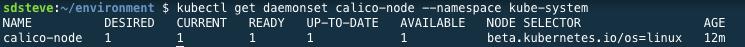 Calico Daemon Status